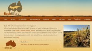 BUsh Blitz website